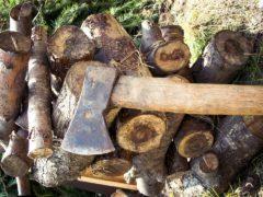 Obróbka drewna na miarę XXI wieku